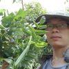 Bai Thuoc Tri Dau Bao Tu