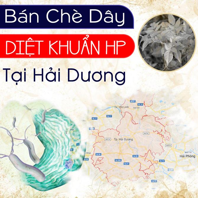 Mua Che Day O Hai Duong O Dau Ban