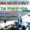 Tai Khanh Hoa Mua Tra Day O Dau Uy Tin Chat Luong