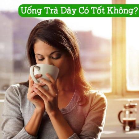 Uong Tra Day Co Tot Khong